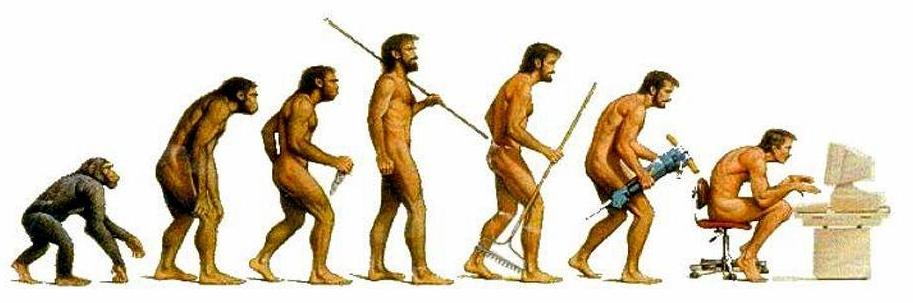 Эволюция?